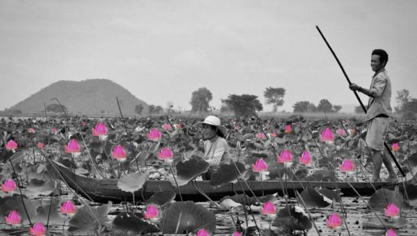 Lotus Lake Battambang