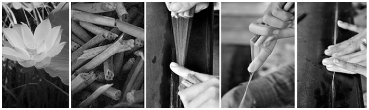 Lotus yarn creation process